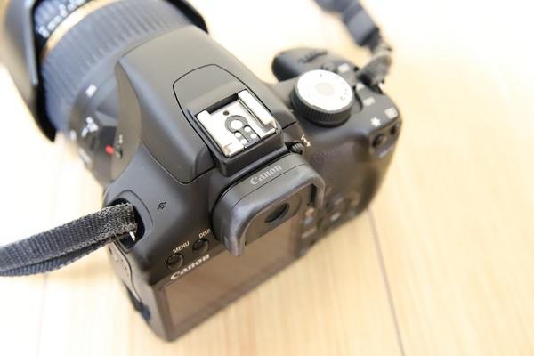 MG-Ef_01.jpg