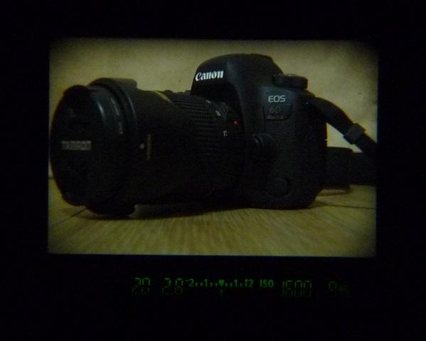 MG-Ef_05.jpg